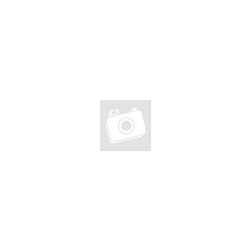 Apple iPhone 12 Pro Max Pitaka Twill Prémium Hátlapvédő Tok - Fekete / Ezüst (KI1201PM)